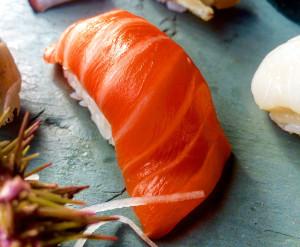 Sushi Salmon CK 2
